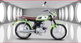 Kuba-Motosiklet-RX9-Yakit-Tüketimi-Teknik-Özellikleri-2