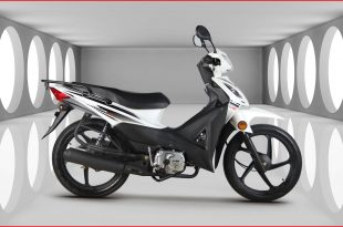 Kuba-Motosiklet-Rainbow-100-Yakit-Tüketimi-Teknik-Özellikleri-1